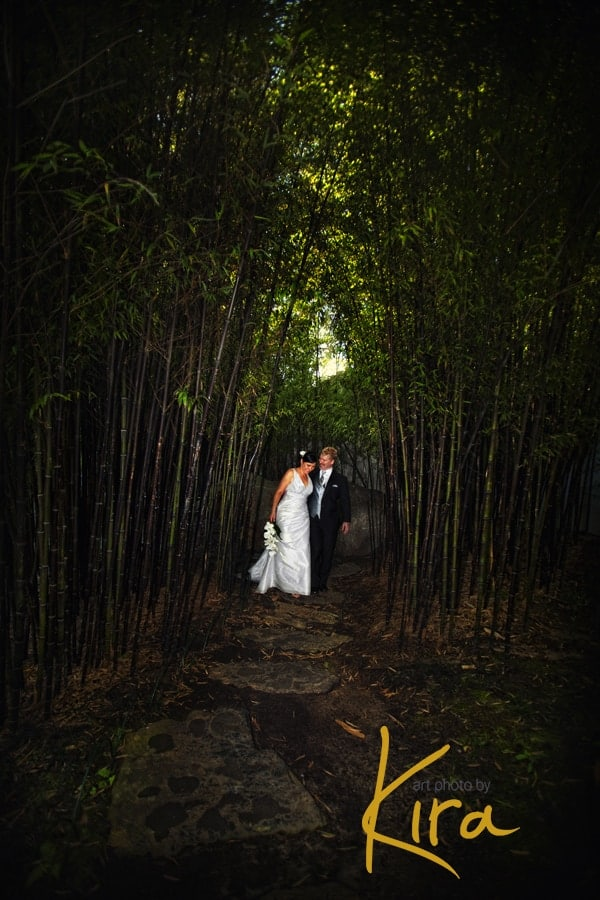 Wedding-photography-Chinese-Garden-Sydney-photos