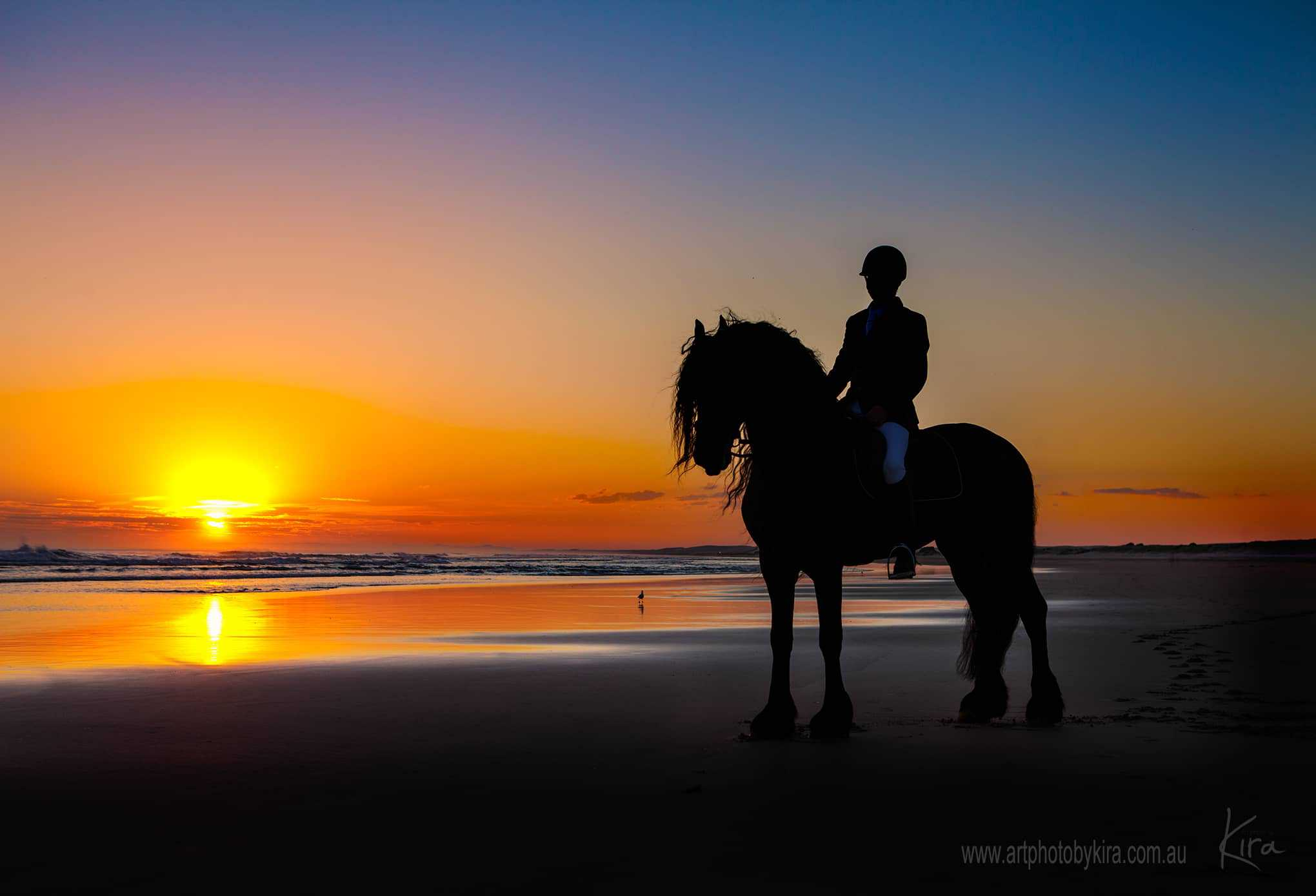 glamour shots with beautiful sunset and friesian horse