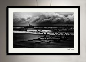 framed-sygna-print