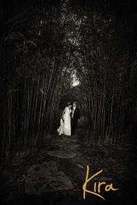Wedding-photography-Chinese-Garden-Sydney-photos