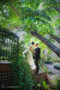 wedding photography couple photographer