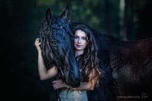 horse portrait photography Sydney Kira